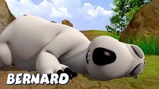 Bernard Bear | Sleep On The Floor AND MORE | Cartoons for Children