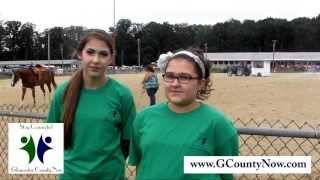 Gloucester County 4h Fair: 2013