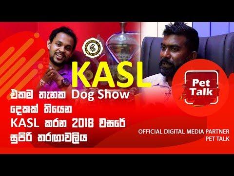 එකම තැනක Dog Show දෙකක් තියෙන KASL කරන 2018 වසරේ සුපිරි තරඟාවලිය   Pet Talk