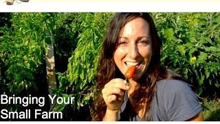 Bring Your Small Farm Vision to Life: What you need in your plans
