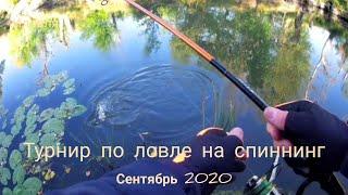 Турнир по ловле на спиннинг с берега Иловля сентябрь 2020