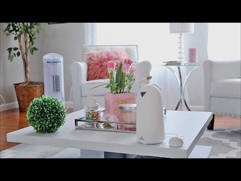 Healthy Home Remedies | Reducing Seasonal & Pet Allergies | Breathing Clean Air
