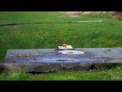 Shotkam Trap Beretta DT11