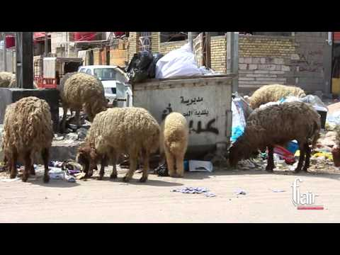 Garbage is not being picked up in Basra, south of Iraq.