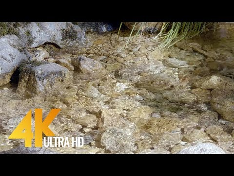 Crystal Clear Creek - 4K Nature Relax Water Video & Water Sounds - 3 Hours