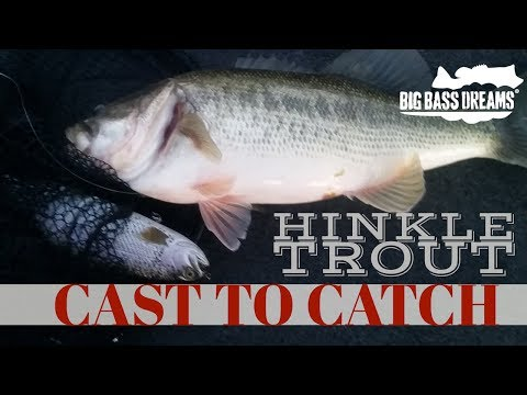 Hinkle Trout Eating Bass Cast to Catch