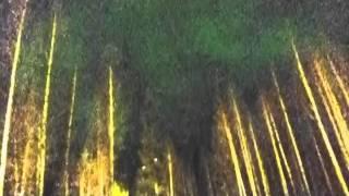 2011年3月7日のルオストで撮影したオーロラ写真のスライドショーです。