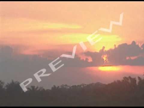 Impact Of Tourism: Amazon
