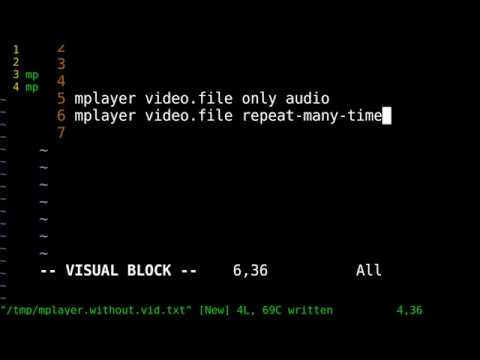 command line video audio playback control - mplayer - play audio only and  repeat any times