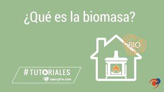 ¿Qué es la Biomasa y cómo funciona?