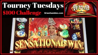 LONG Slot Challenge with Dragons, Kittens + CanCan ✦ Tourney Tuesdays LIVE PLAY✦ Slot Machine Pokies