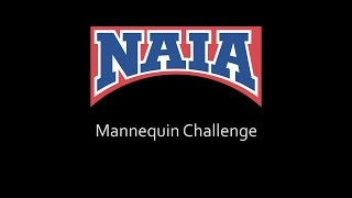 NAIA employees accept the Mannequin Challenge