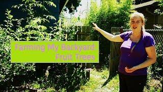 Farming My Backyard Tour - Fruit Trees - Mobile Minute
