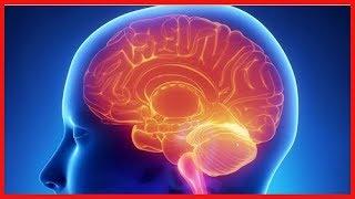 La sclérose en plaques : une maladie à plusieurs aspects