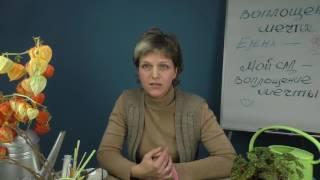 видео Микробиологическое удобрение Байкал ЭМ1