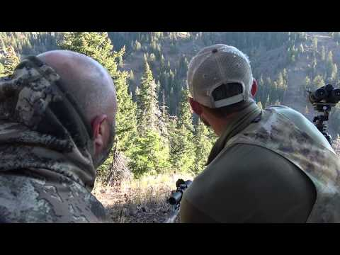 Backcountry Bear Hunt | Blue Mountains Washington State
