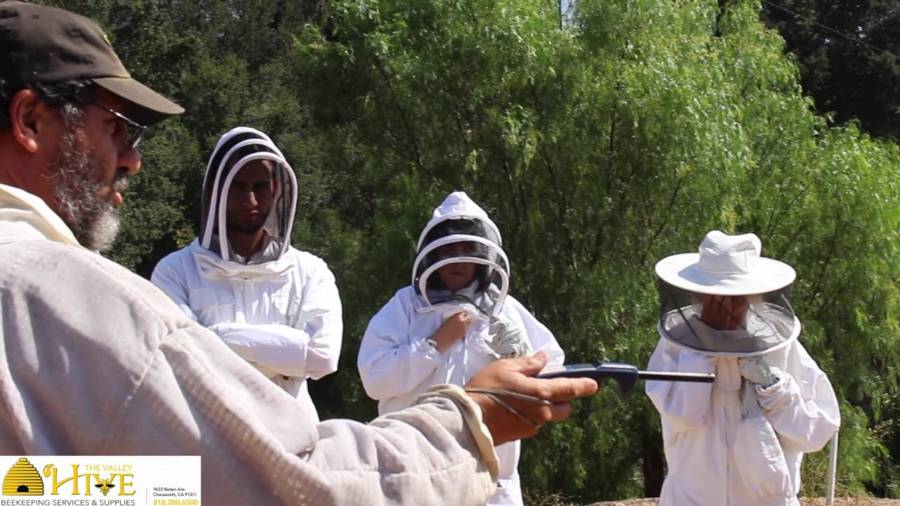 learn about backyard beekeeping at the valley hive beekeeping