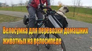 Велообзор: Велосумка для перевозки домашних животных на велосипеде.