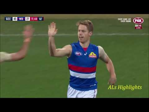 Western Bulldogs Goals | 2019 Round 9 Vs Geelong