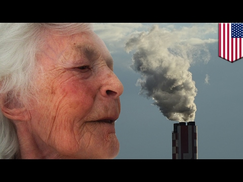 Alzheimer's disease could be triggered by heavy air pollution, new research suggests - TomoNews