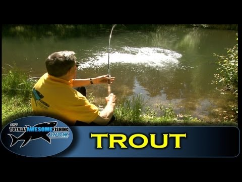 How to catch Trout on the Mayfly - Totally Awesome Fishing Show