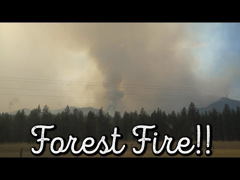Driving In Montana Forest Fire! SO SCARY!!