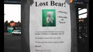 Dumbest Lost Pet signs