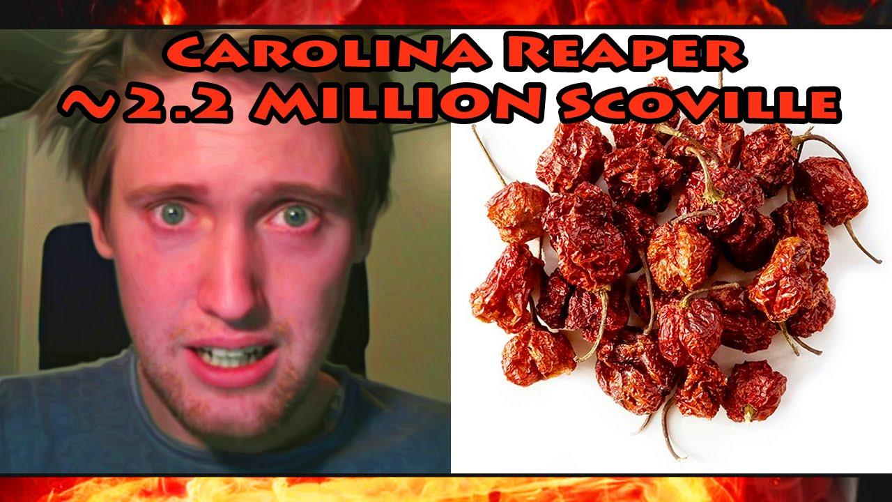 Carolina Reaper Chili Pepper (HP22B) | THE END OF ZALZAR!    |