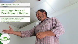 Santiago Juan   Underutilized Crops & The Future of Pro-Organic Belize   #GrassfedTV