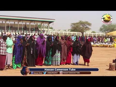 The best unique Somali cultural dance found in Mandera.