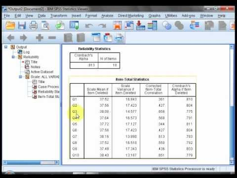 reliability test using SPSS