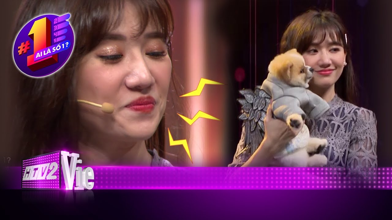 image Mèo Trấn Xì và Trấn Thành hãy đợi đấy, Hari Won đã