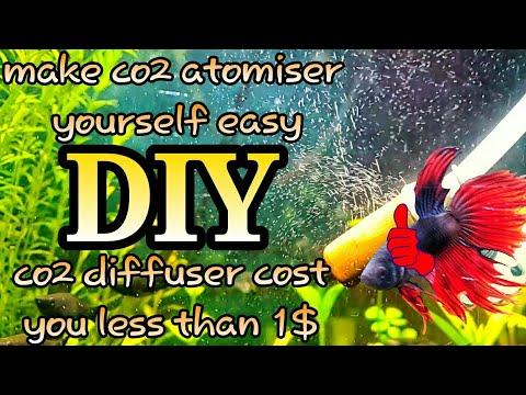 DIY co2 diffuser for less than $1 😎🤘   aqua adventure  