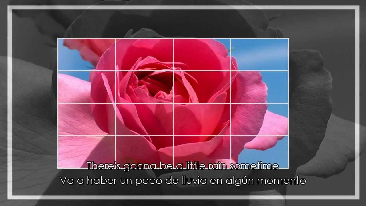 Lynn Anderson Rose Garden Spanish And English Lyrics Letra Espa Ol E Ingl S Youtube