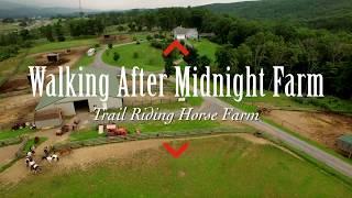 Walking After Midnight Farm, Winchester, VA
