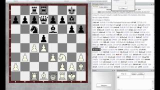 Защита Грюнфельда Houdini1.5a vs Fritz 12.avi