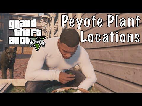 GTA 5 - All Peyote Plant Locations (Play as a Animal)