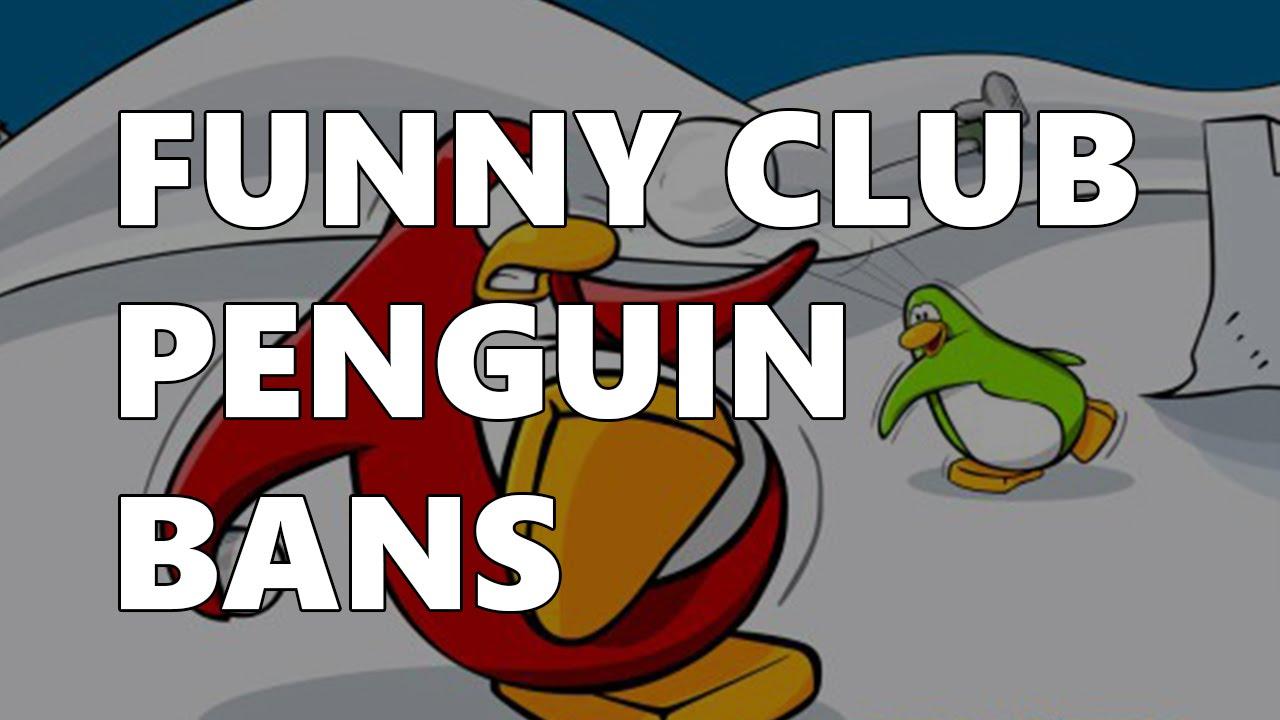 funny club penguin bans   youtube