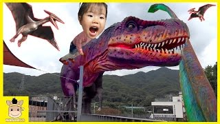 Indoor Playground Fun for Kid Finger Family Song Play Dinosaurs Caught On Tape | MariAndKids Toys