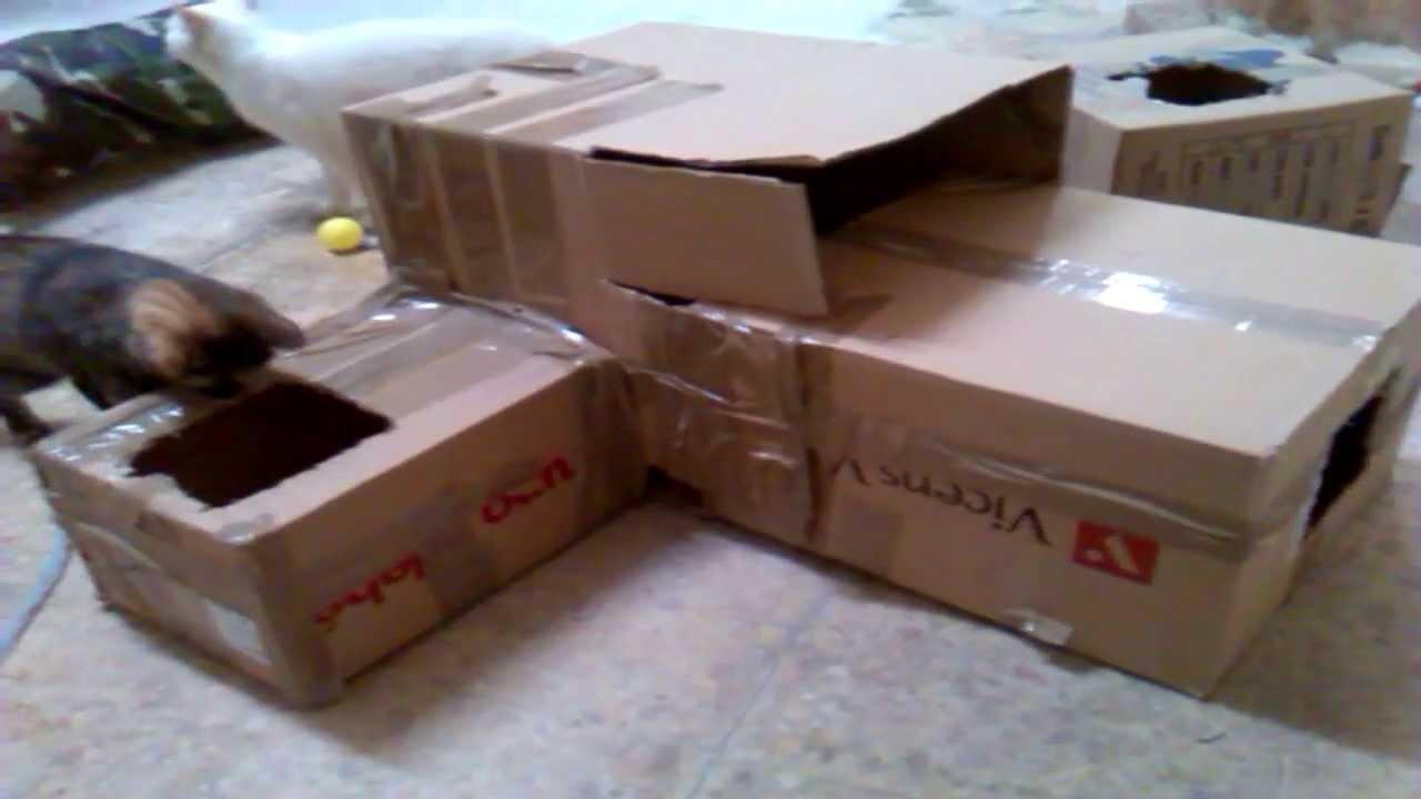 Cajas laberinto para gatos hazlo tu mismo juguete y manera de entretener gatos youtube - Juguetes caseros para conejos ...