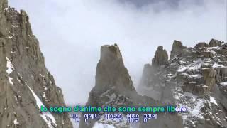 박칼린의 넬라판타지아
