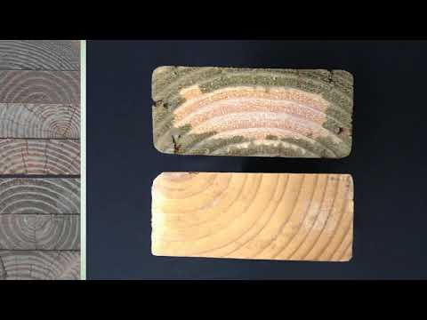 Wood Preservatives and Pressure Treating