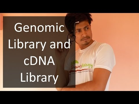 Gene Library | Genomic Library and cDNA Library