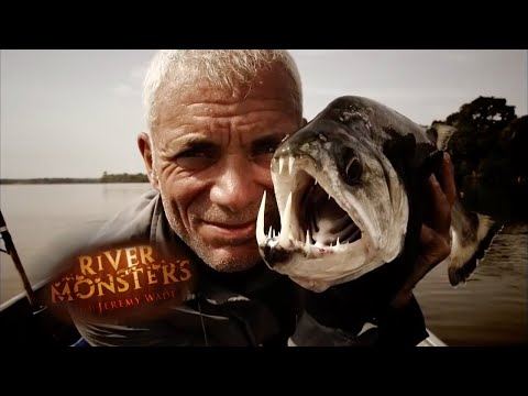 The Legend Of The Goonch | HORROR STORY | River Monsters
