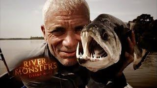 The Devil Catfish - River Monsters