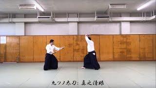 小野家伝書に基づく一刀流の九ツノ太刀の再現、の試し撮り