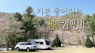 봄 캠핑 다녀왔습니다 ㅣ 벚꽃캠핑ㅣ 원주 피노키오 캠핑…
