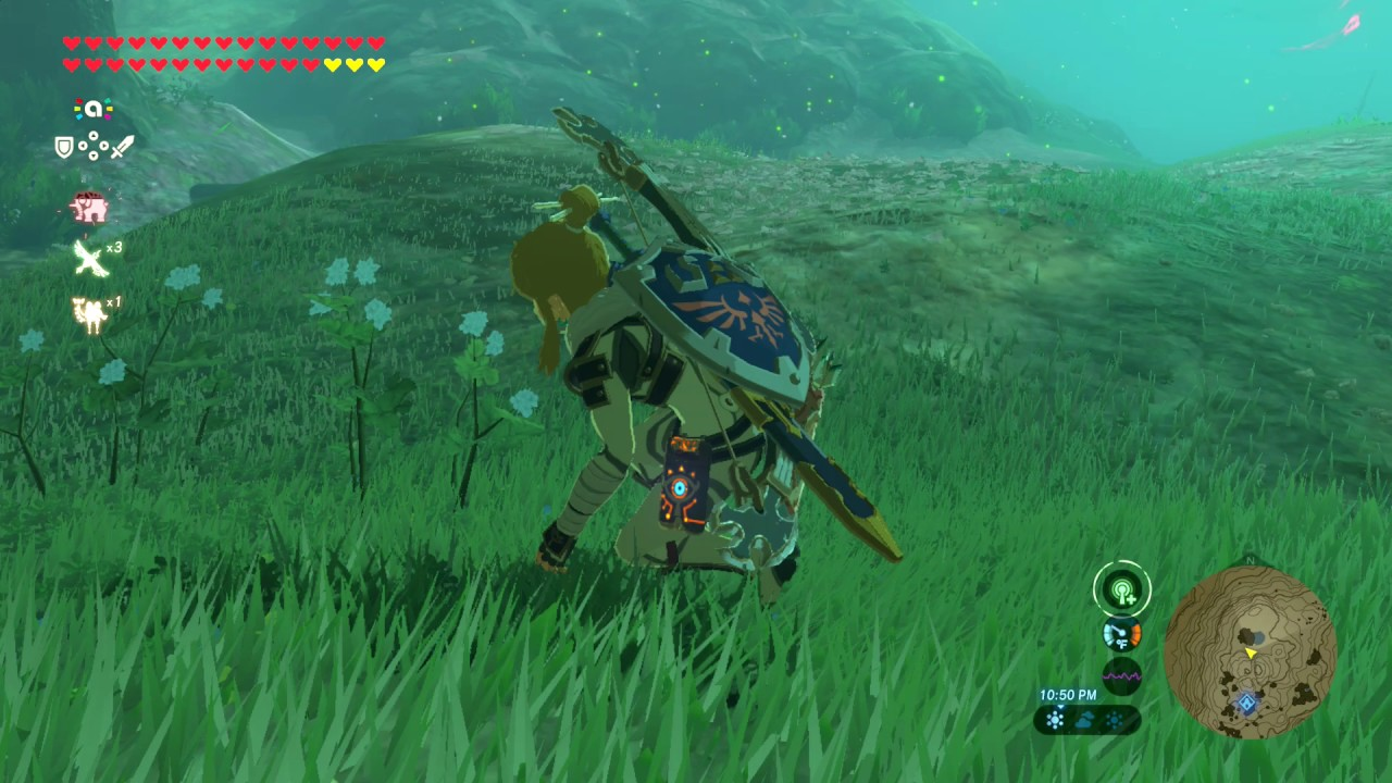 Zelda Breath Of The Wild Where To Farm Silent Princess Youtube
