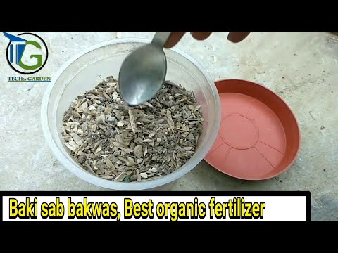 How to Use Bone Meal for Plants | How Much Bone Meal to Use | Organic  fertilizer