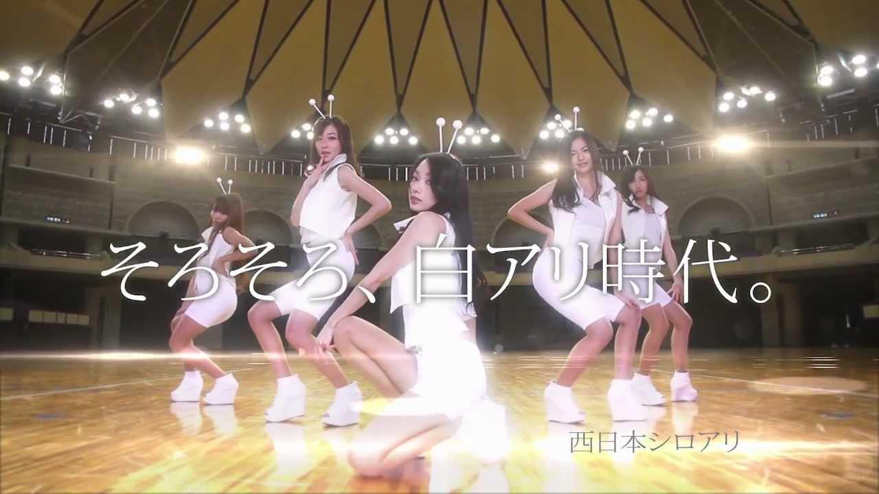 西日本シロアリ TV-CM「白アリ時...